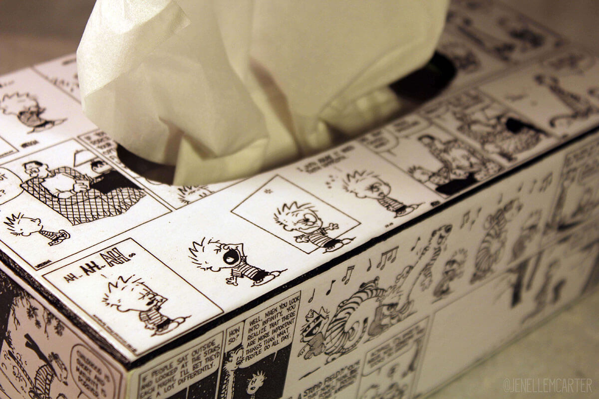 Calvin and Hobbes tissue box cover top